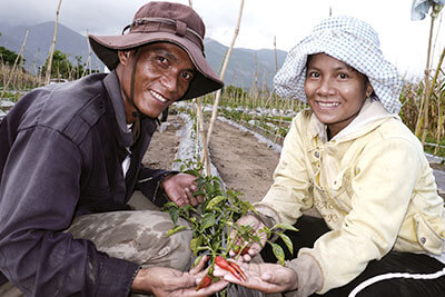 Agricultural development CSV project in rural Vietnam