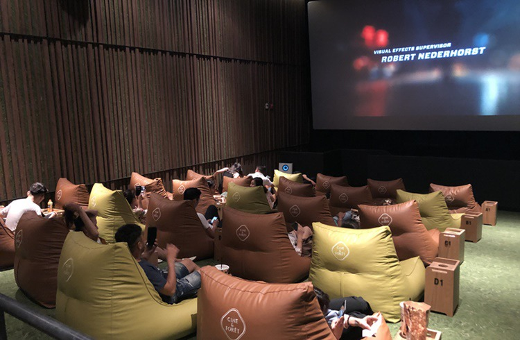 CINE & FORÊT screening room