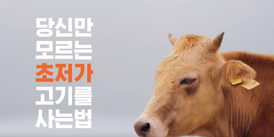 당신만 모르는 초저가 고기를 사는법
